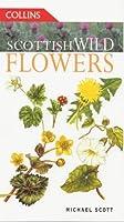 Scottish Wild Flowers (Collins Guides)