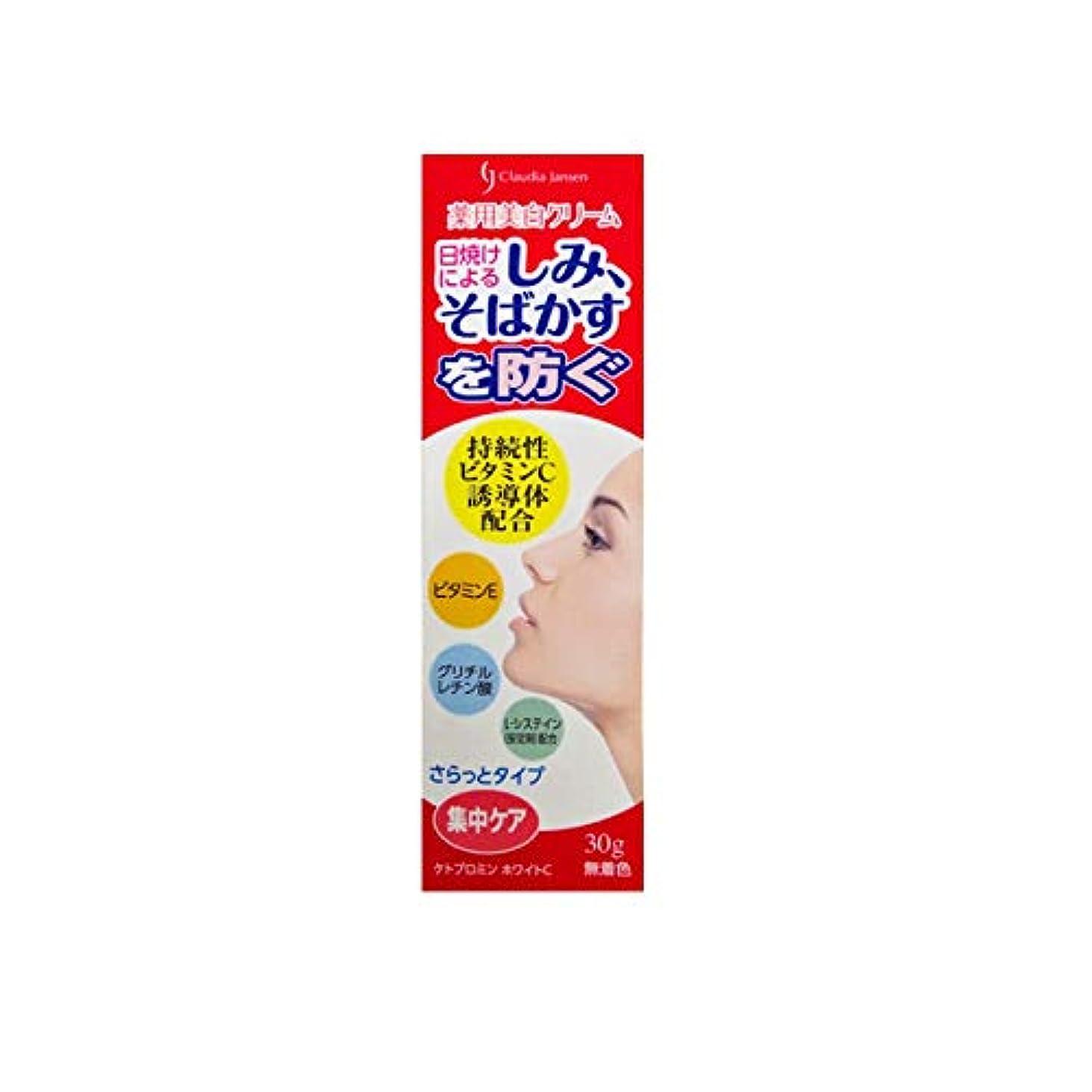 聴覚第九スノーケル三友薬品 医薬部外品 薬用ホワイトニングクリームC 30g
