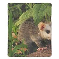 マウスパッド 動物のオポッサム