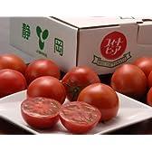 静岡県産 高糖度フルーツトマト 「スイートピュア」 2L-3Sサイズ 7-25玉入り 約900G ※冷蔵 [訳あり]