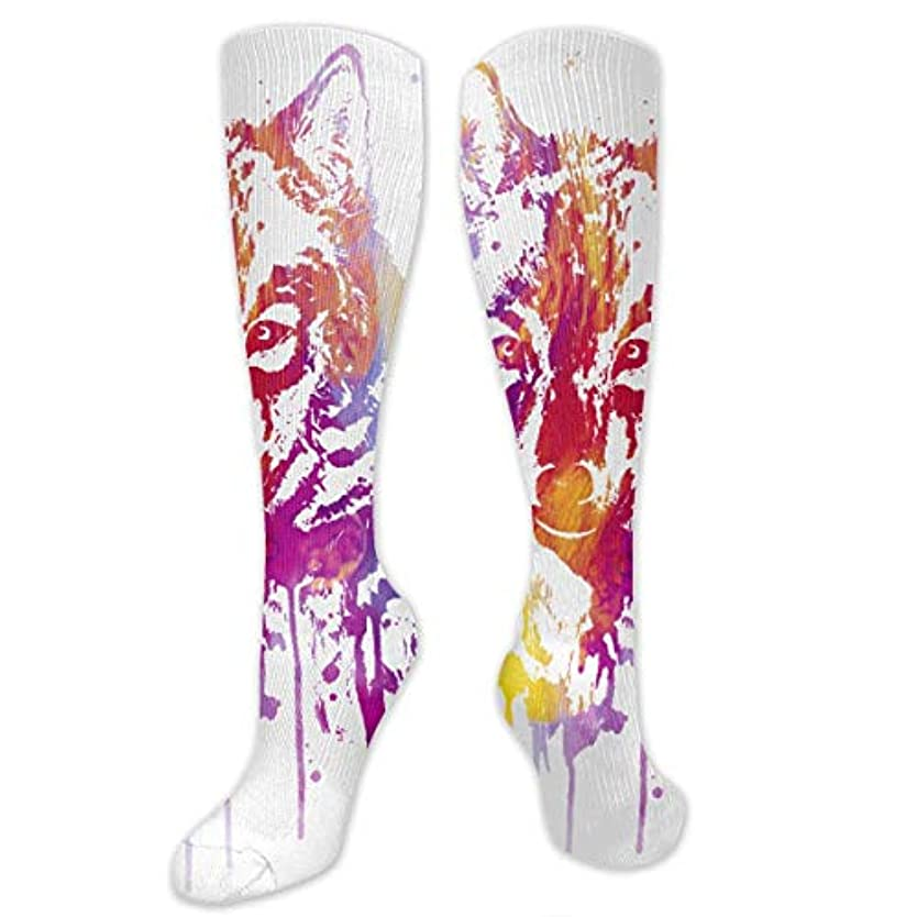 練習したビュッフェ要旨ストックフォト- Qrriy女性オオカミ絵画ソフトクリスマス膝高ストッキング靴下、クリスマス楽しいカラフルな靴下