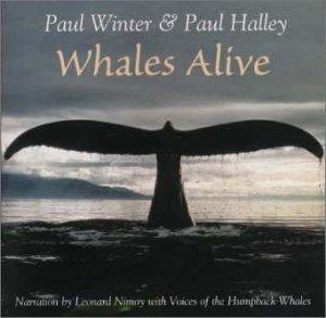 鯨の詩うた