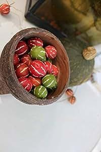 【種子】沖縄スズメウリ ちゅらうり約50粒