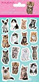 Kimberlin Kittens Standard Stickers