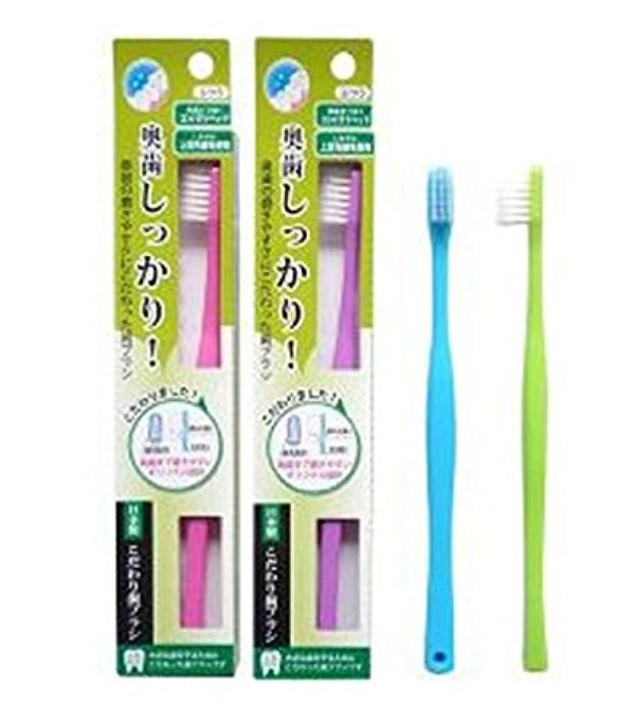 ひねくれた同僚佐賀ライフレンジ 奥歯しっかりこだわり歯ブラシ 先細 12本 (ピンク4、パープル4、ブルー2、グリーン2)アソート