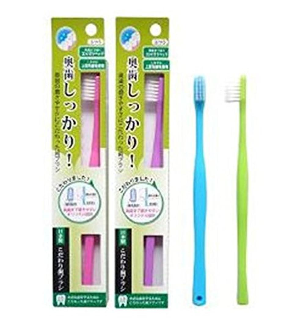 けがをする強大な平行ライフレンジ 奥歯しっかりこだわり歯ブラシ 先細 12本 (ピンク4、パープル4、ブルー2、グリーン2)アソート
