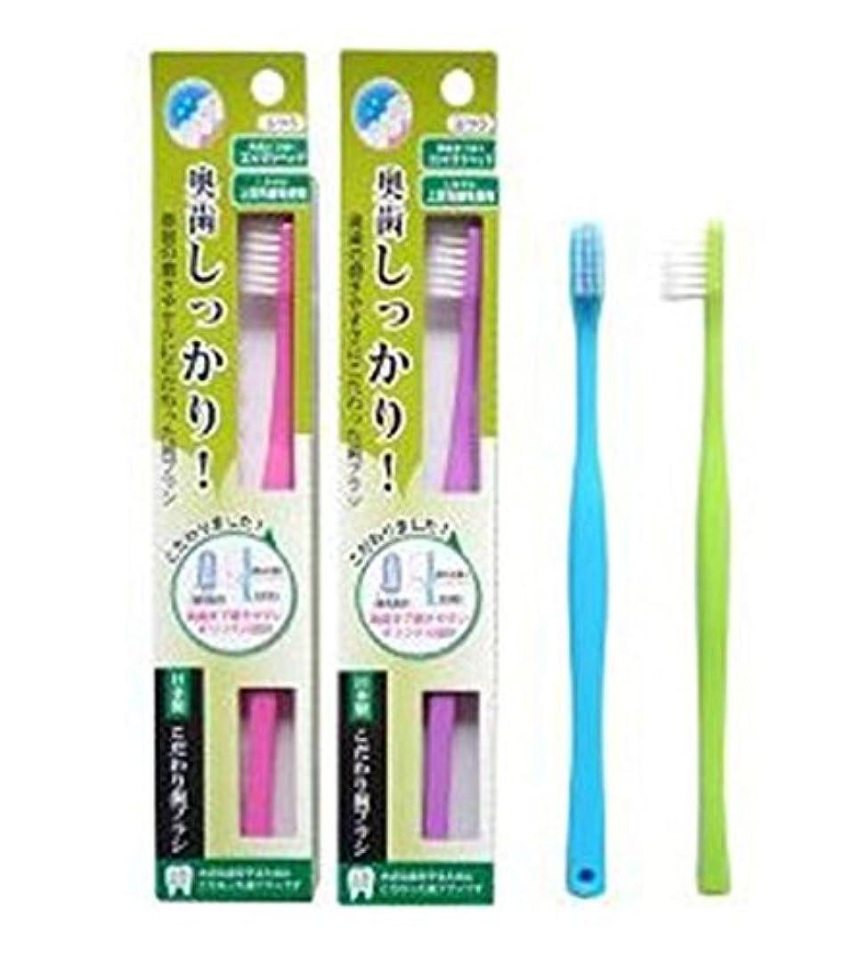 うまれたクルー接続詞ライフレンジ 奥歯しっかりこだわり歯ブラシ 先細 12本 (ピンク4、パープル4、ブルー2、グリーン2)アソート