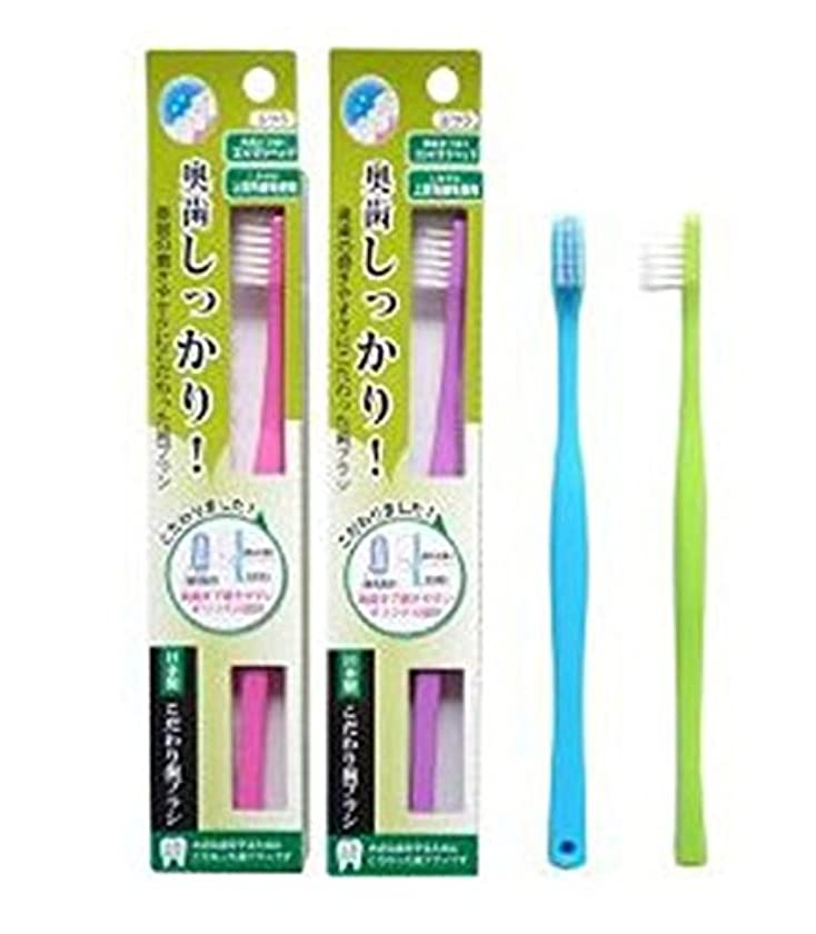 信頼変位ヘロインライフレンジ 奥歯しっかりこだわり歯ブラシ 先細 12本 (ピンク4、パープル4、ブルー2、グリーン2)アソート
