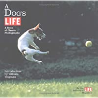 A Dog's Life: A Book of Classic Photographs