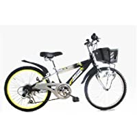 RAYSUS(レイサス) マウンテンバイク 自転車 22インチ RY-226KD キッズバイク シマノ6段ギア ダイナモライト 後輪鍵 100%完成車