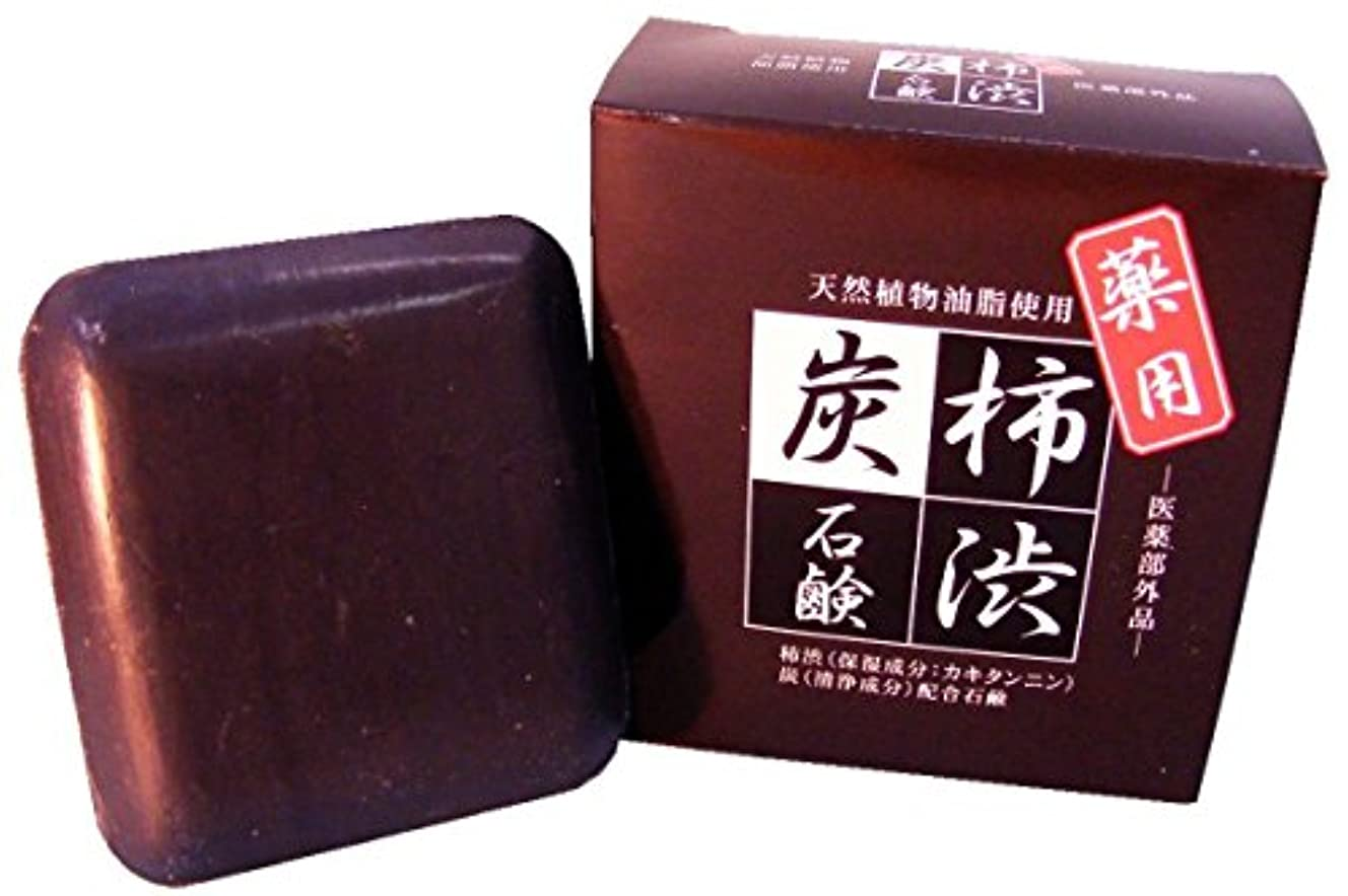 摂氏順応性読みやすさラポール 薬用 柿渋炭石鹸 90g