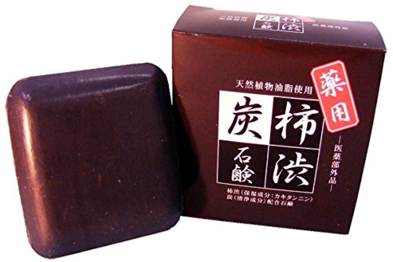 障害エネルギーアンカーラポール 薬用 柿渋炭石鹸 90g