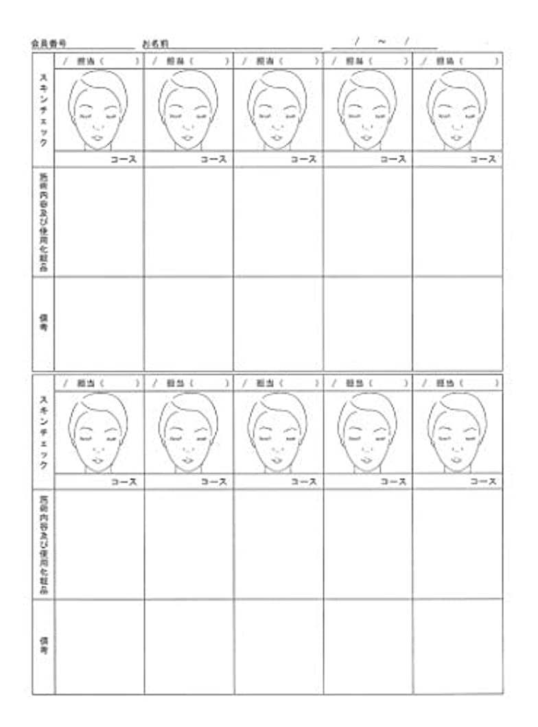 小学生流暢ファッションスキンチェックカウンセリングカルテ A4判両面(50枚入)