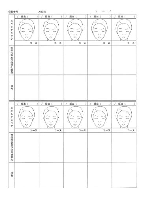 気分祖先ズボンスキンチェックカウンセリングカルテ A4判両面(50枚入)