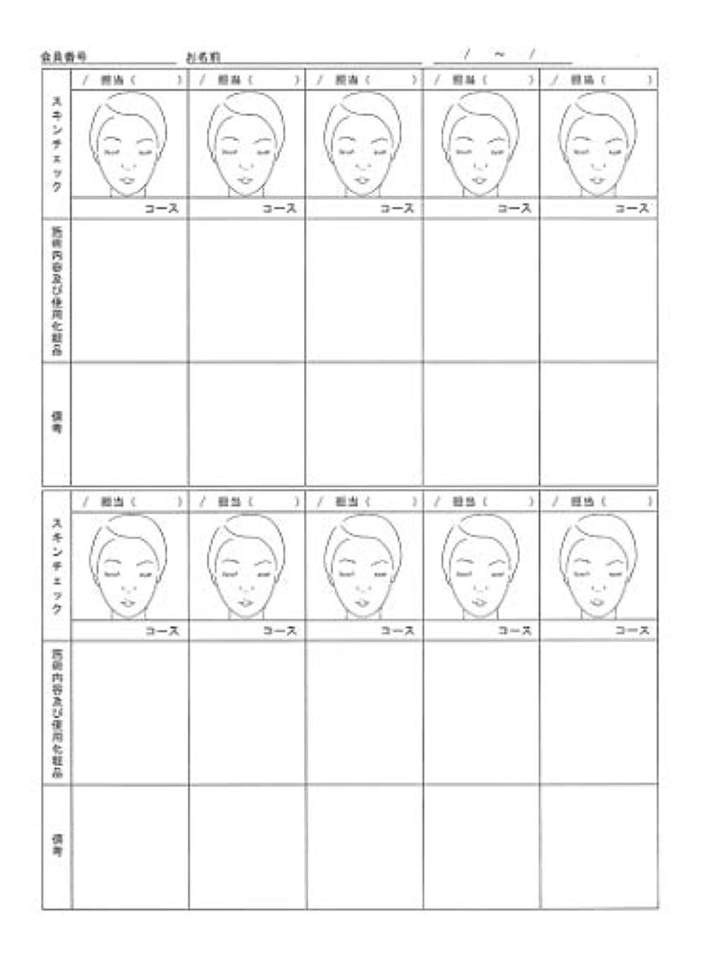 ガレージ習字国旗スキンチェックカウンセリングカルテ A4判両面(50枚入)