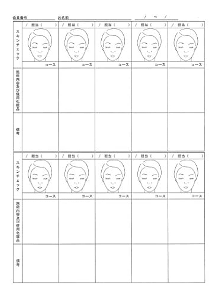 局送金付録スキンチェックカウンセリングカルテ A4判両面(50枚入)