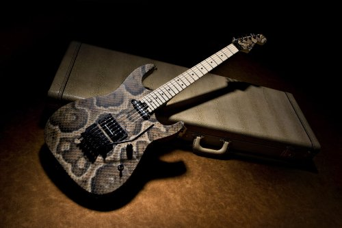 Charvel USA Custom Shop Artist Series Warren De Martini Signature Snake/Chrome parts
