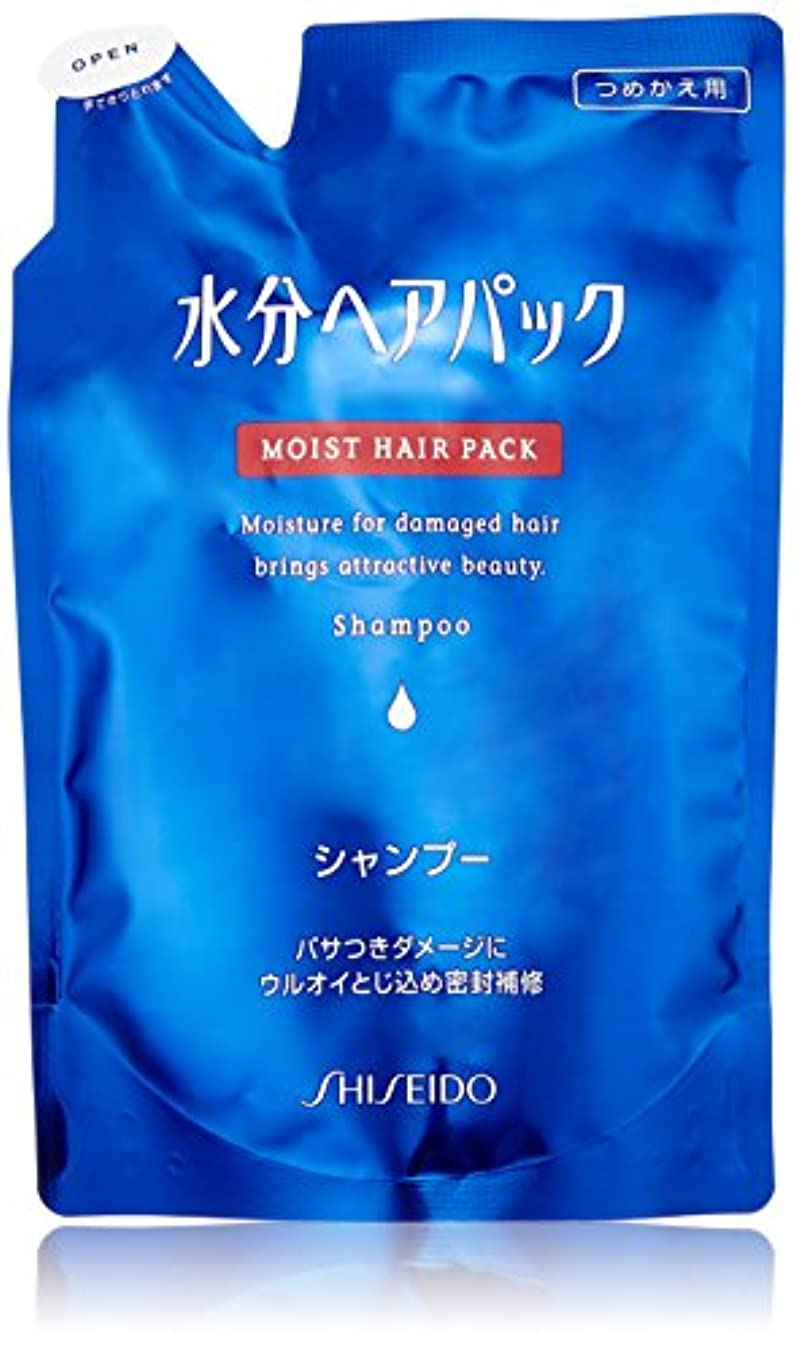 宝悩みベーカリー水分ヘアパック シャンプーa 詰替用450ml