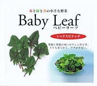 【種子】ベビーリーフ・レッドスピナッチ 1dl