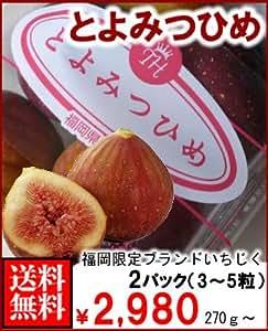 南国フルーツ 福岡産いちじく・とよみつひめ270gx2パック