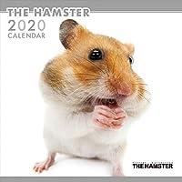 THEHAMSTER ハムスター カレンダー 2020 カレンダー グッズ 動物 小動物 アニマル 壁掛け