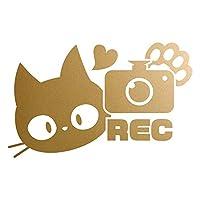 REC カッティングステッカー 猫 ドラレコ 防犯 あおり防止 幅30cm x 高さ18.8cm ゴールド
