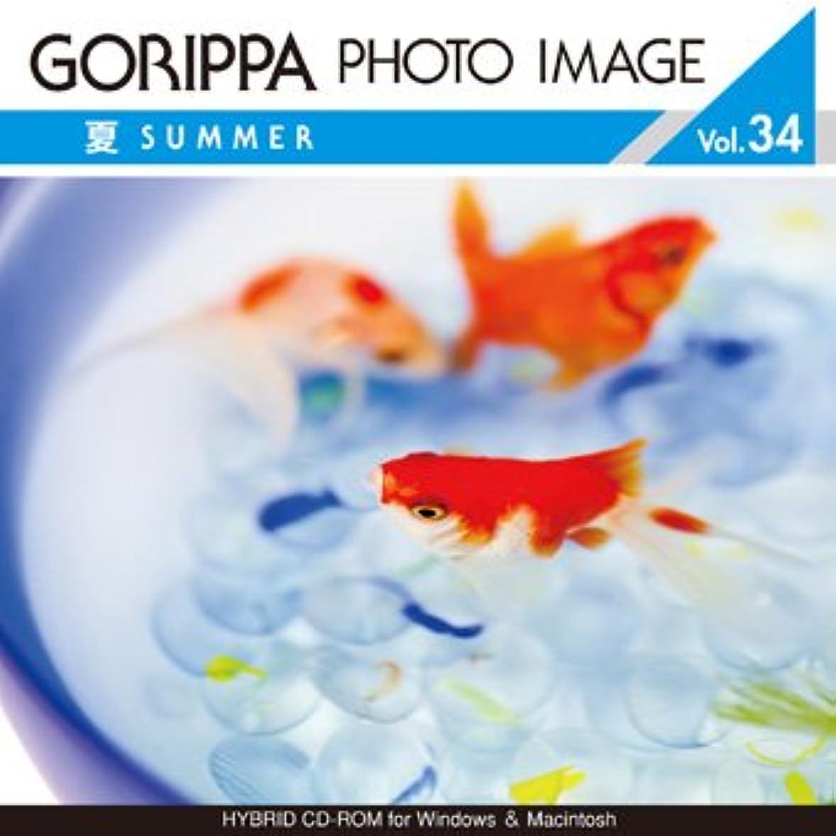 GORIPPA PHOTO IMAGE vol.34 ?夏?