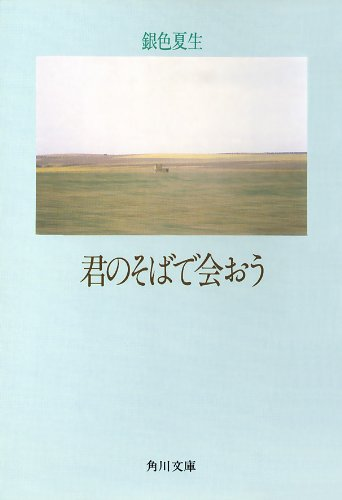 【写真詩集】君のそばで会おう (角川文庫)の詳細を見る