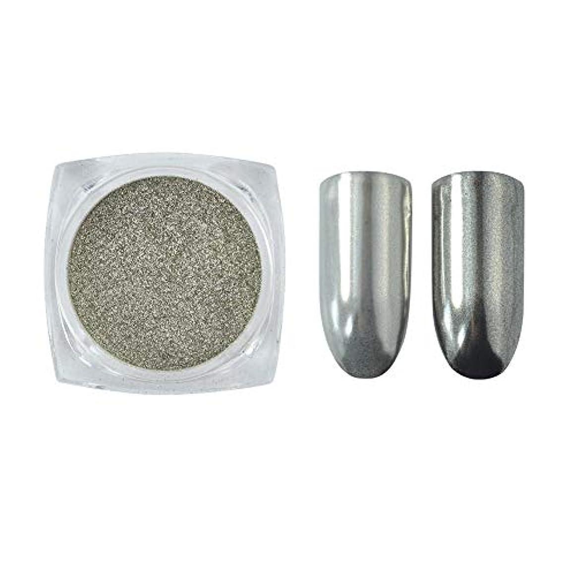 メーリンドス グリッターパウダーネイルミラーシルバー 鏡面効果に仕上がる 細かいパウダー銀色1g入る ケース付け