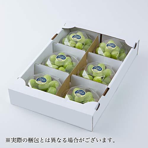シャインマスカット 岡山県産  風のいたずら 訳あり 200g×6パック ギフト お歳暮 クリスマス 葡萄 ぶどう ブドウ