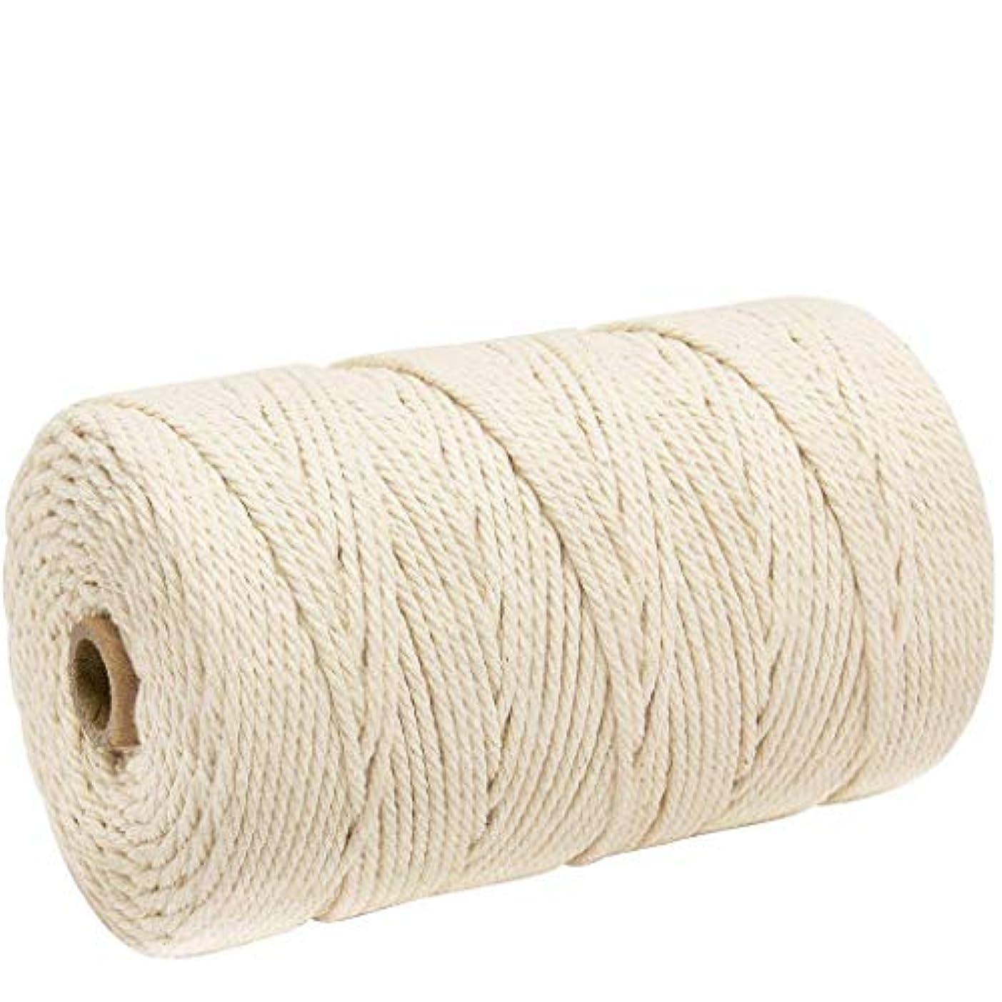 三番大混乱ハグナチュラルコットン マクラメ ロープ 紐 糸 手作り編み糸 綿 DIY壁掛けハンガークラフト編みコードロープ 3㎜ 200m (ライスホワイト)