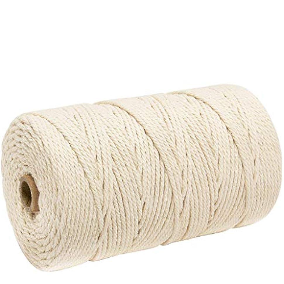 宝消毒剤このナチュラルコットン マクラメ ロープ 紐 糸 手作り編み糸 綿 DIY壁掛けハンガークラフト編みコードロープ 3㎜ 200m (ライスホワイト)