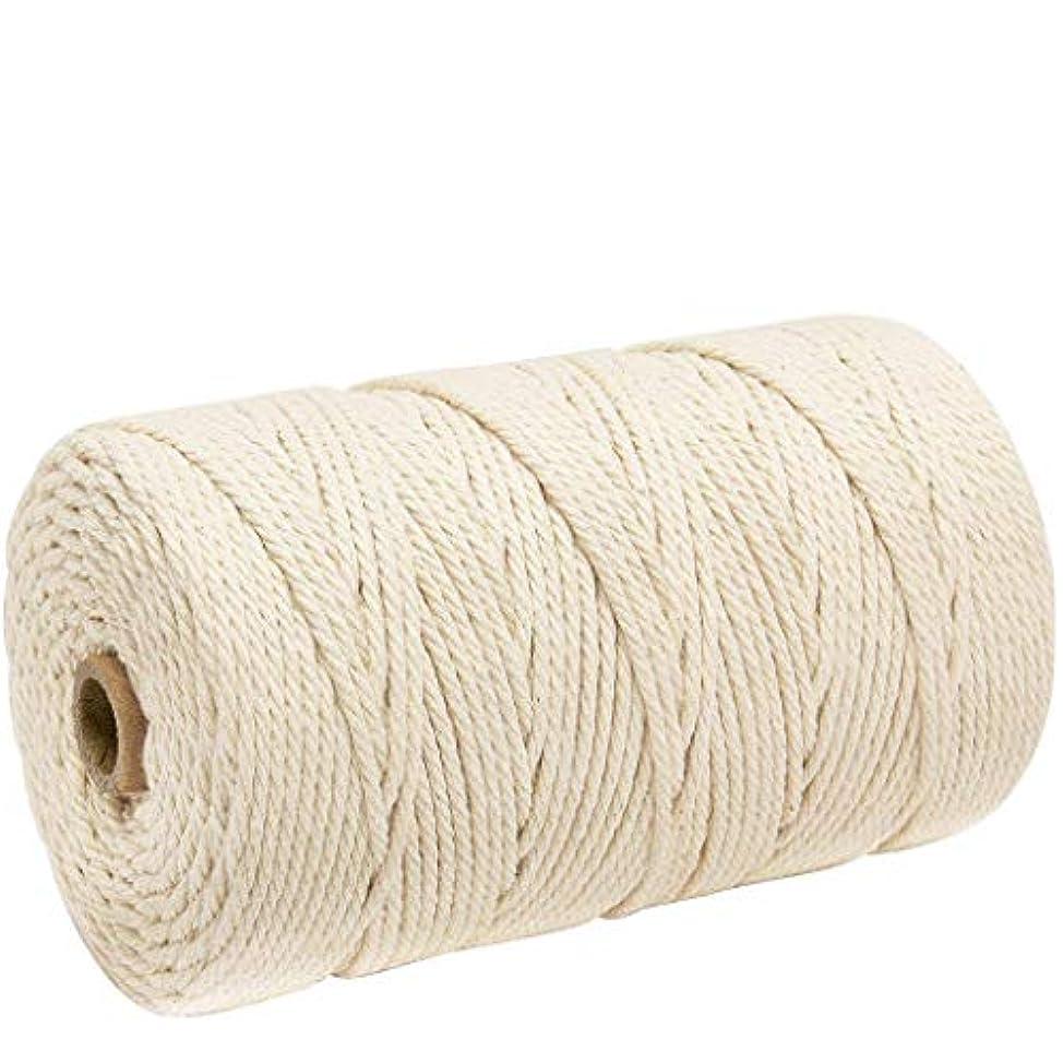 増幅タブレット海軍ナチュラルコットン マクラメ ロープ 紐 糸 手作り編み糸 綿 DIY壁掛けハンガークラフト編みコードロープ 3㎜ 200m (ライスホワイト)