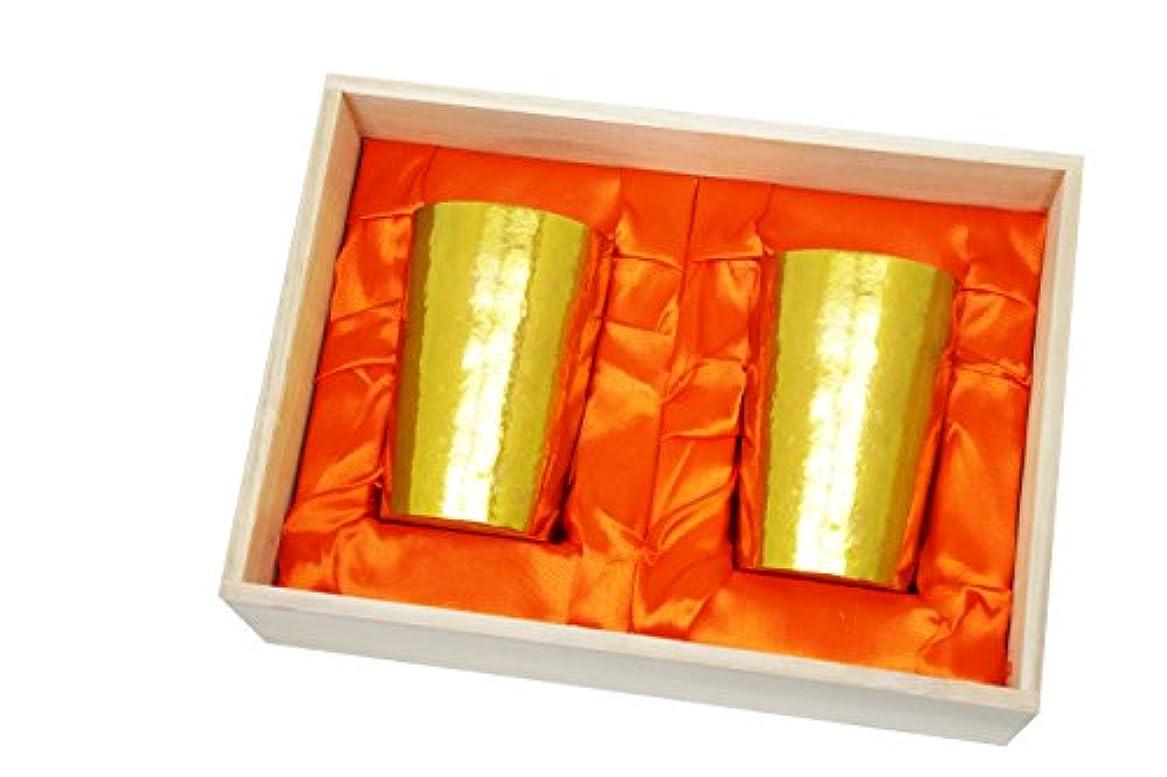 付添人心理学拮抗HORIE(ホリエ) 新潟県燕産 チタン2重タンブラー 窯創り ライト 270cc 磨き 金 2個セット T09KM270MGGDSET