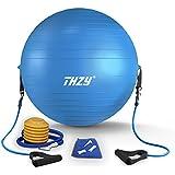 THZY バランスボール 65cm エクササイズボール ヨガボール 2WAY PVC フィットネスボール フットポンプ トレーニングチューブ付 ジム/ホーム/オフィスなどに適用 ブルー