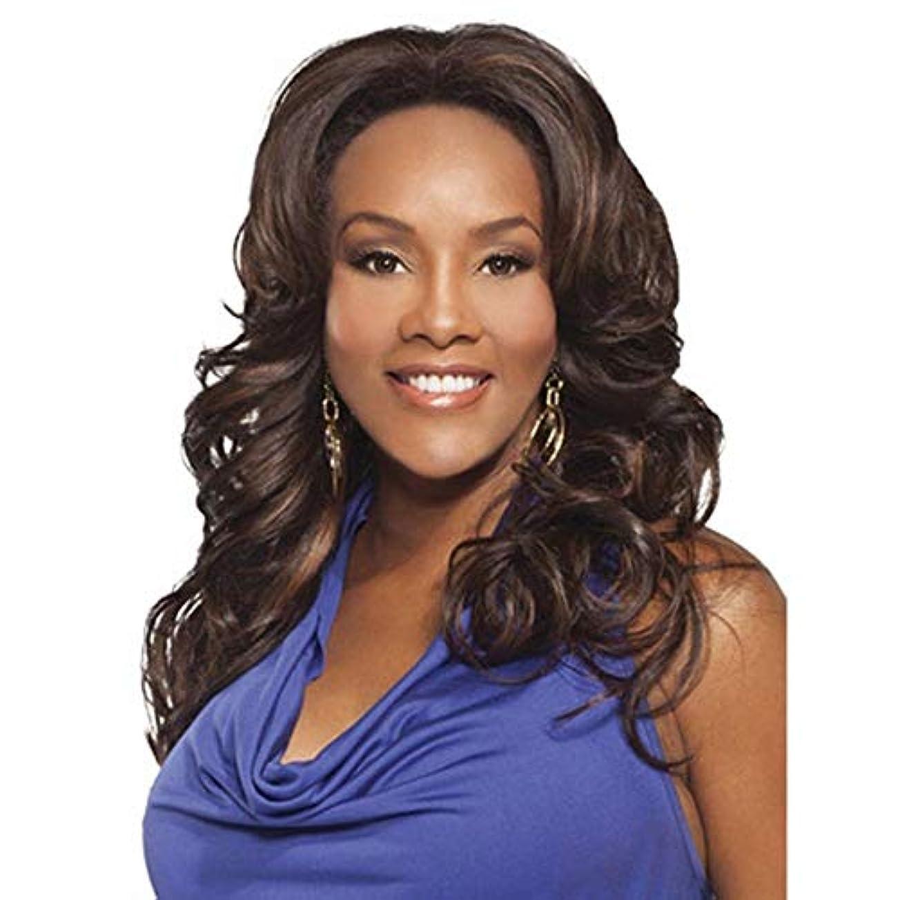 シミュレートする相反する蒸WASAIO 黒人女性完全な頭部の髪ダークブラウンコスプレパーティーウィッグまたは日常生活+無料ウィッグキャップ用ウィッグ (色 : ブラウン)