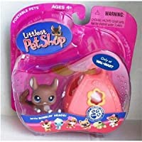 Littlest Pet Shop (リトルペットショップ) Chinchilla/Sugar Glider with Carrier & Tag - Exclusive # 314(並行輸入)