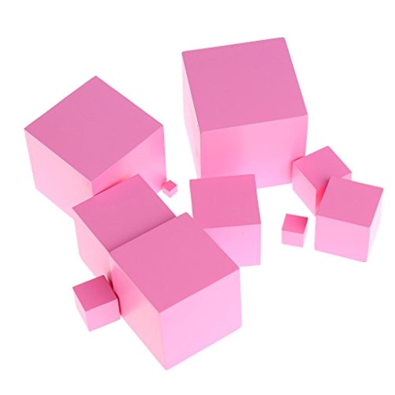 yuuups モンテッソーリ センサリアルマテリアルタワー ファミリーセット 木製ビルディングブロック おもちゃ 子供用 工作エンジニアリング 男の子 女の子 対象年齢 3 4 5 歳以上 クリエイティブで楽しいキット