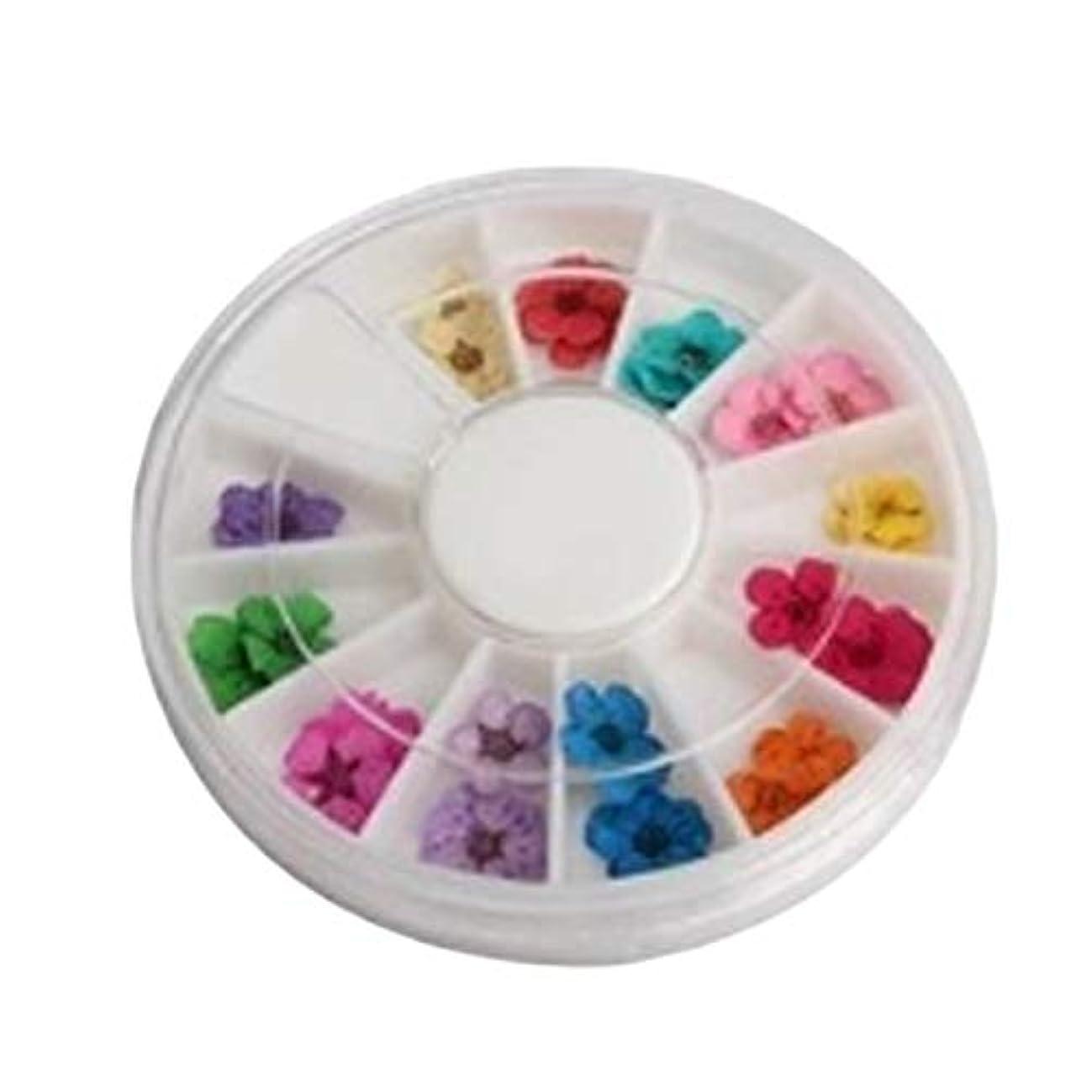 行動に応じて補うYoshilimen 最高品質ホイール36アクリルアクリル装飾トレンディDIYの花高品質アート乾燥爪(None Picture color)