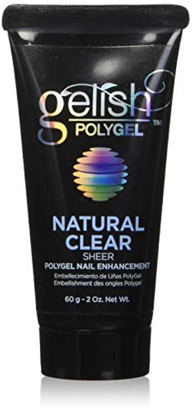 ビザ行為講堂Harmony Gelish Gel Polish - PolyGel - Natural Clear - 60g/2oz