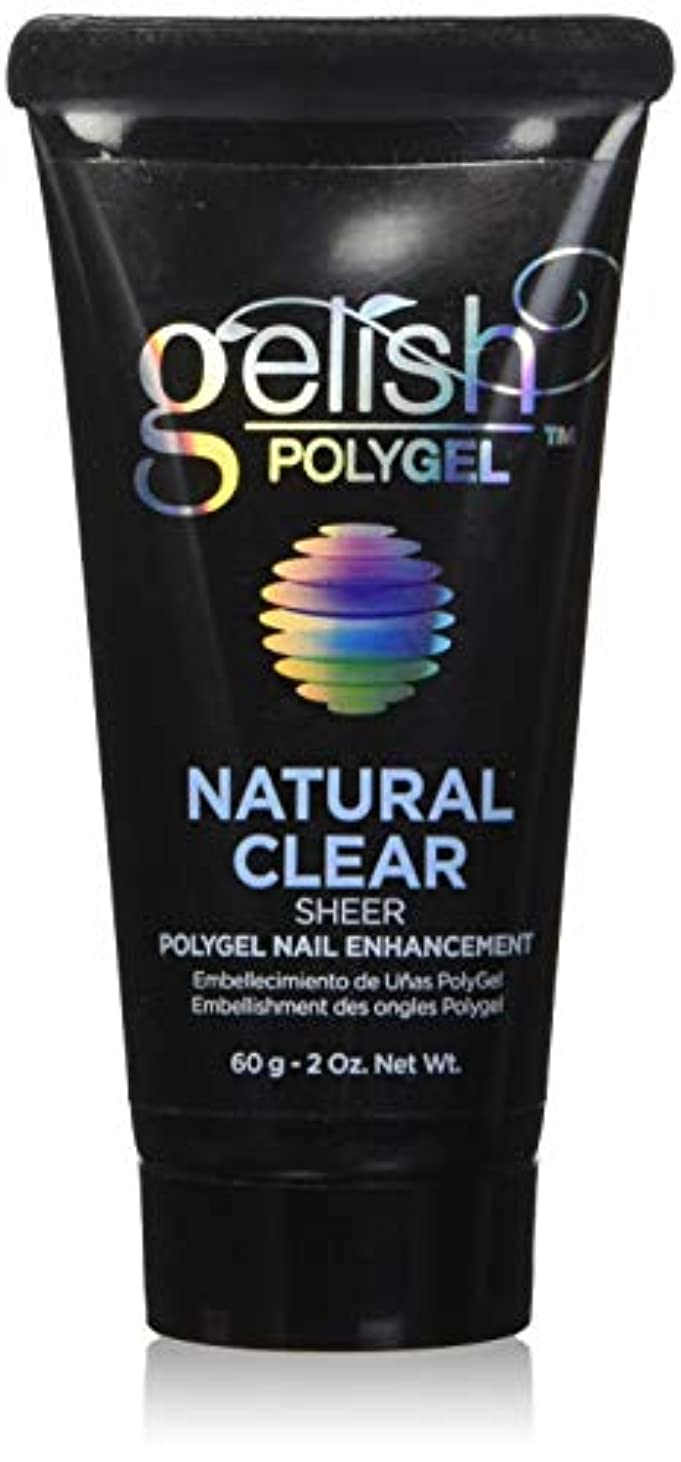 短くする疎外オーロックHarmony Gelish Gel Polish - PolyGel - Natural Clear - 60g/2oz