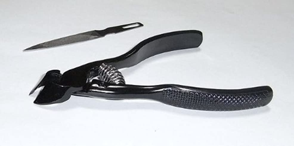 電気陽性甘い細部爪切ニッパー(ブラック)