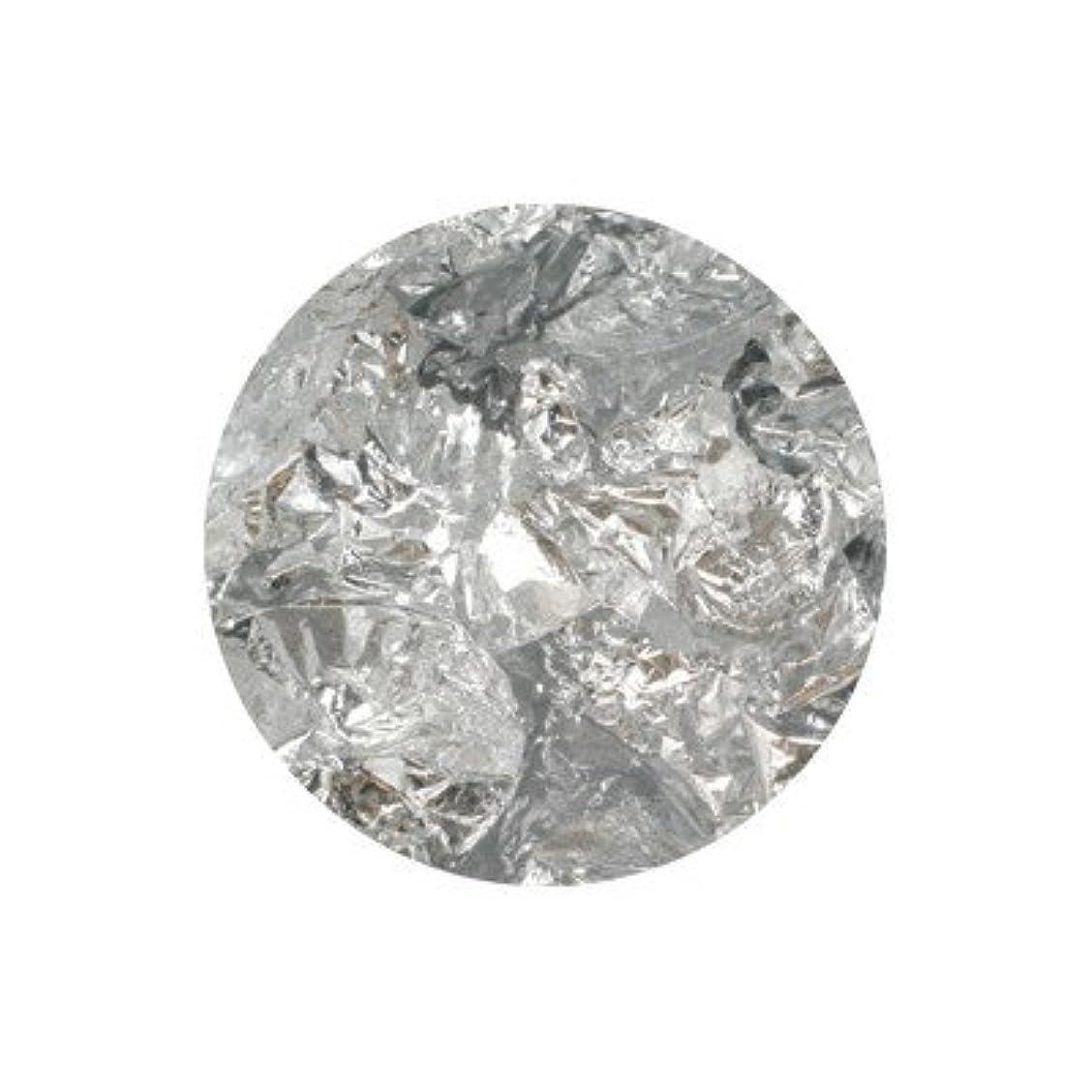 ピューカーテン乱すボンネイル 銀箔