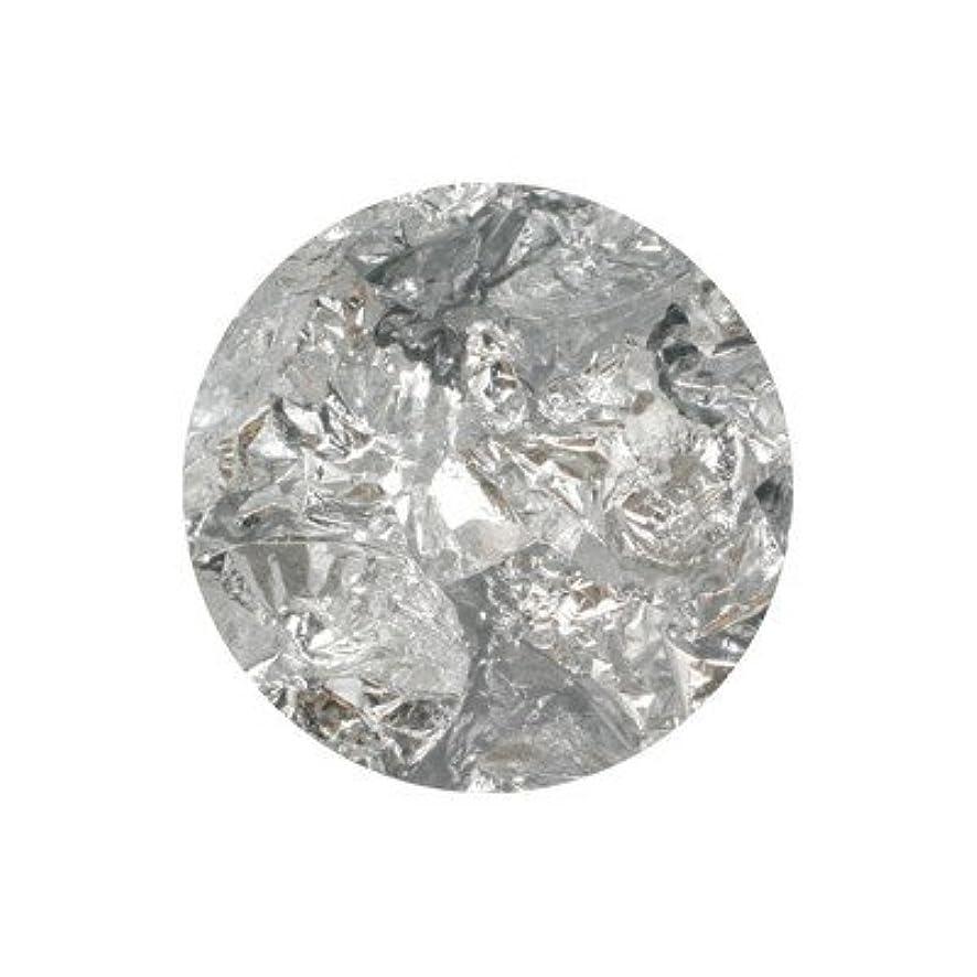 性交ほとんどないきしむボンネイル 銀箔