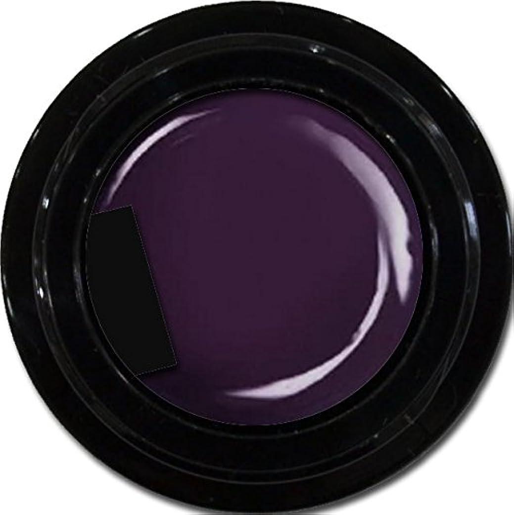 利点肺観光カラージェル enchant color gel M719 AsaiMauve3g/ マットカラージェル M719アサイーモーブ 3グラム