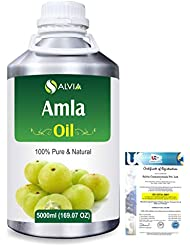 Amla Herbal (Phyllanthus emblica) 100% Natural Pure Oil 5000ml/169fl.oz.