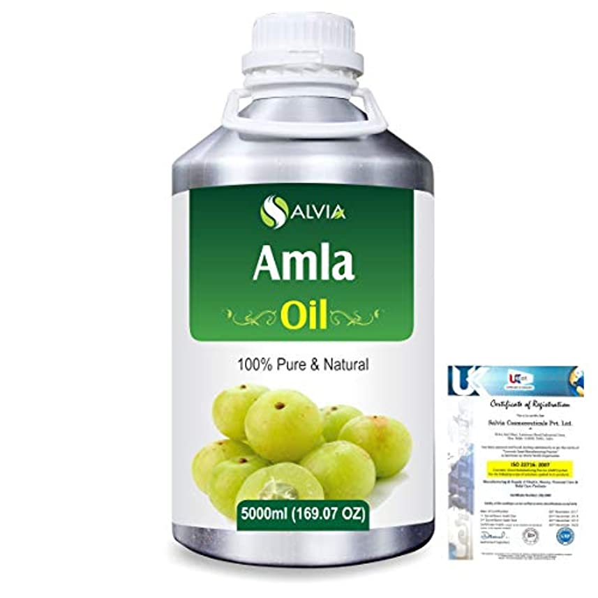 致命的な中古震えるAmla Herbal (Phyllanthus emblica) 100% Natural Pure Oil 5000ml/169fl.oz.