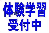 シンプル看板L 「体験学習受付中(紺)」<スクール・塾・教室>屋外可(約H91cmxW60cm)