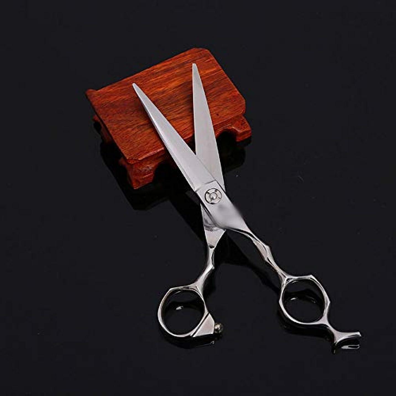 ピクニックをするおっとできるWASAIO プロフェッショナル理容サロンレイザーエッジツールヘアカットはさみ間伐歯のはさみセットの理髪テクスチャーシザーマット?6インチ (色 : Silver)