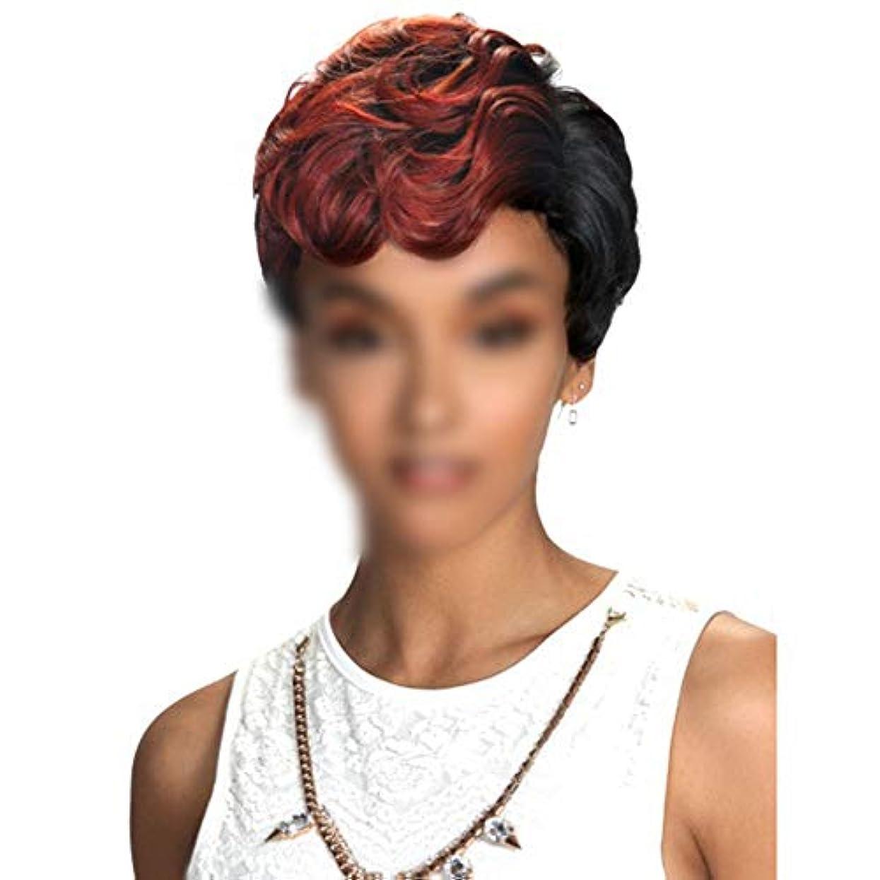 旅ハウス不正直WASAIO 女性用人工毛ウィッグボブヘッドショートカーリーアクセサリースタイル交換用ワインレッドコスプレパーティードレス (色 : ワインレッド)